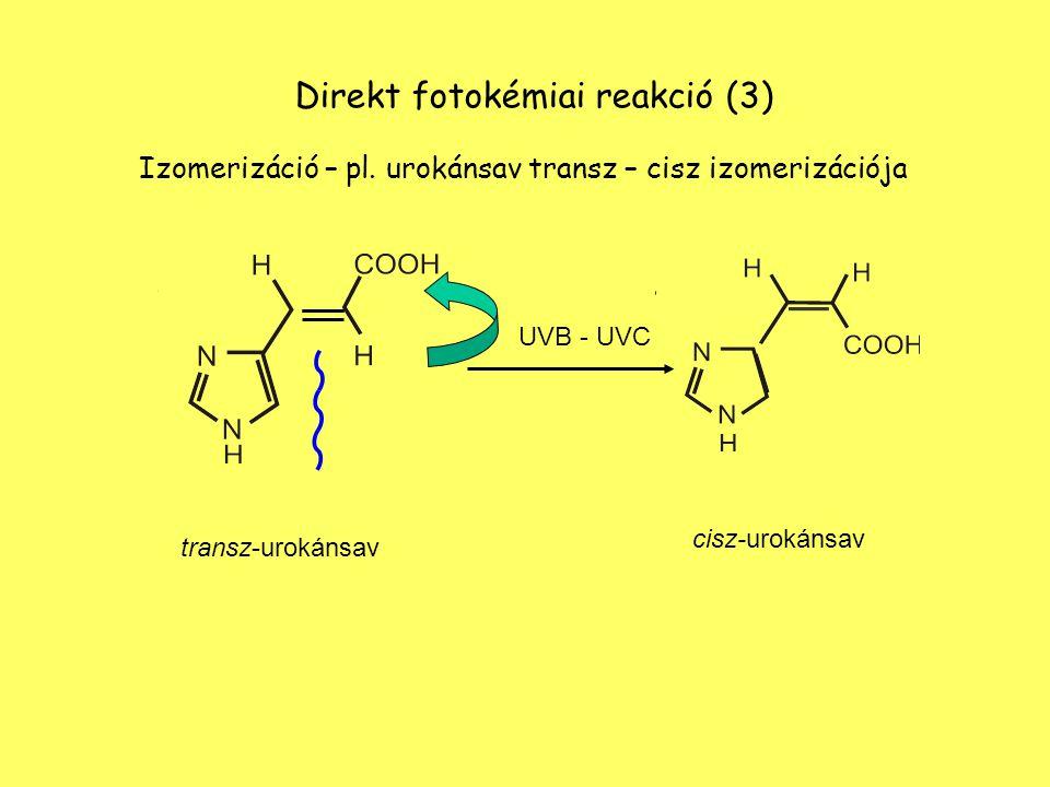 Direkt fotokémiai reakció (3)