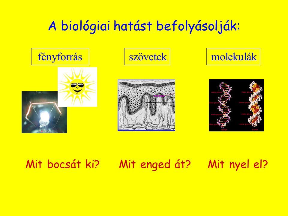 A biológiai hatást befolyásolják: