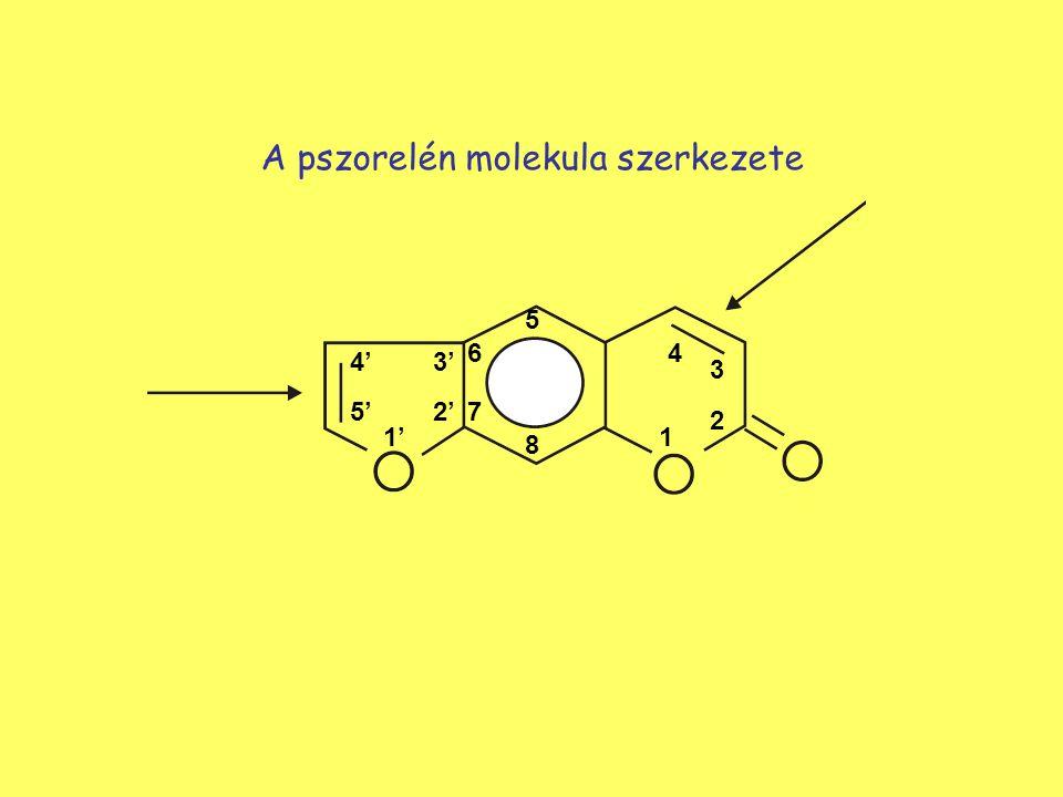 A pszorelén molekula szerkezete