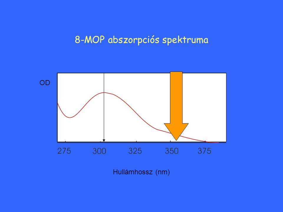 8-MOP abszorpciós spektruma