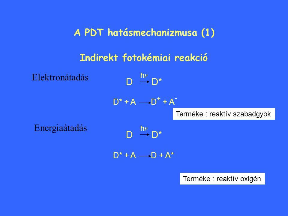A PDT hatásmechanizmusa (1)