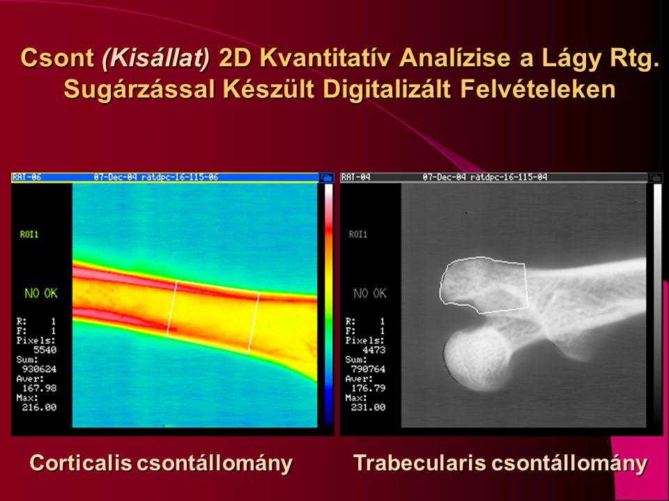Csont (Kisállat) 2D Kvantitatív Analízise a Lágy Rtg
