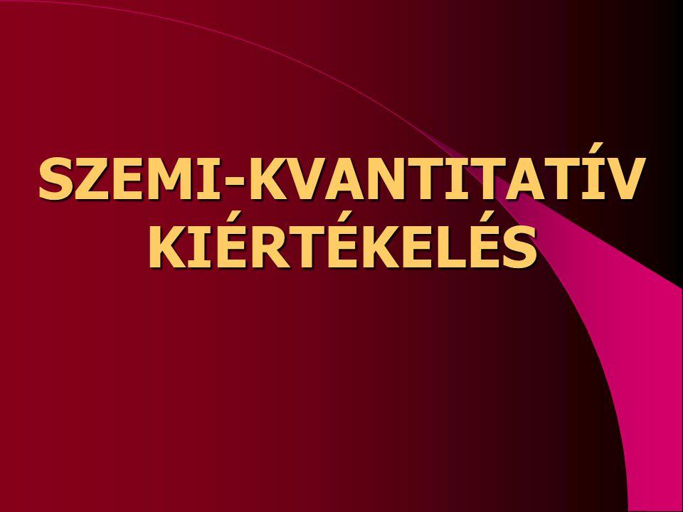 SZEMI-KVANTITATÍV KIÉRTÉKELÉS