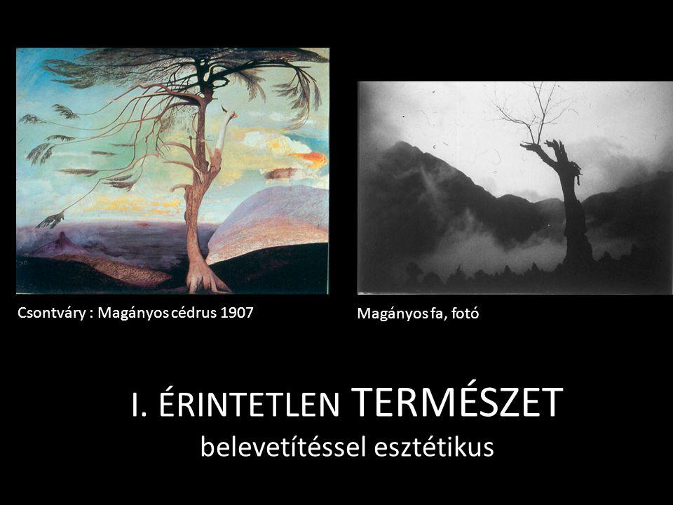 I. ÉRINTETLEN TERMÉSZET