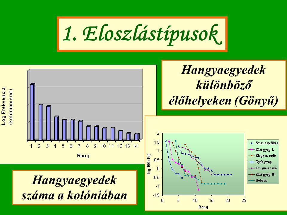 1. Eloszlástípusok Hangyaegyedek különböző élőhelyeken (Gönyű)