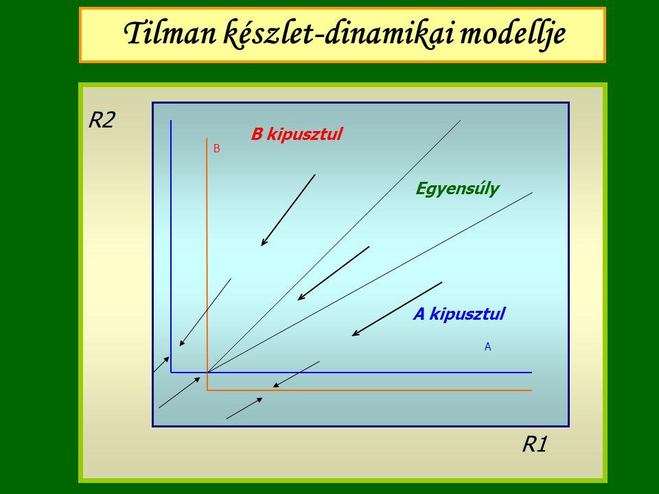 Tilman készlet-dinamikai modellje