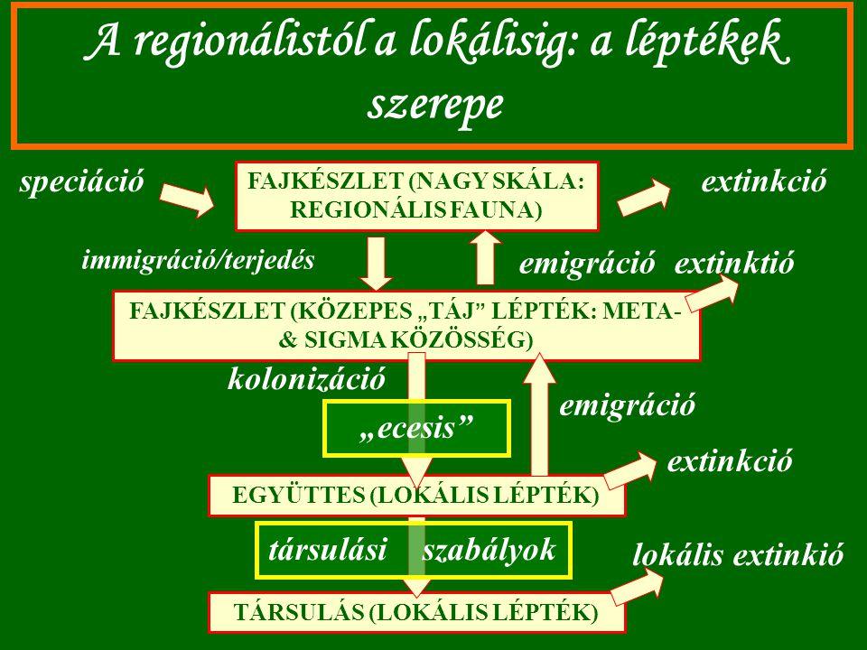 A regionálistól a lokálisig: a léptékek szerepe