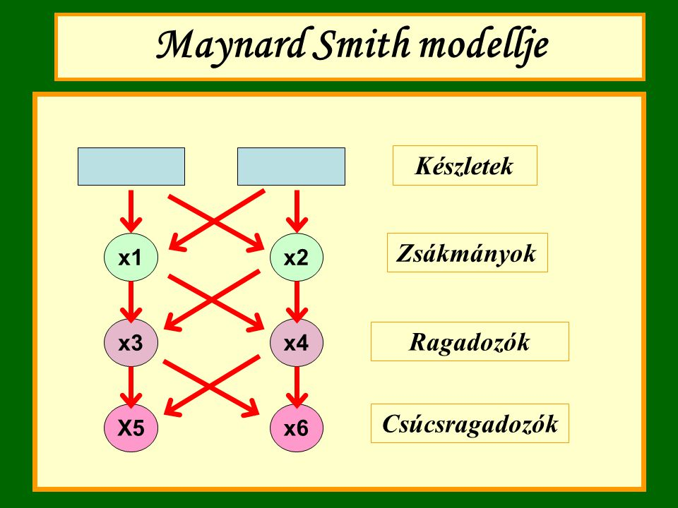 Maynard Smith modellje
