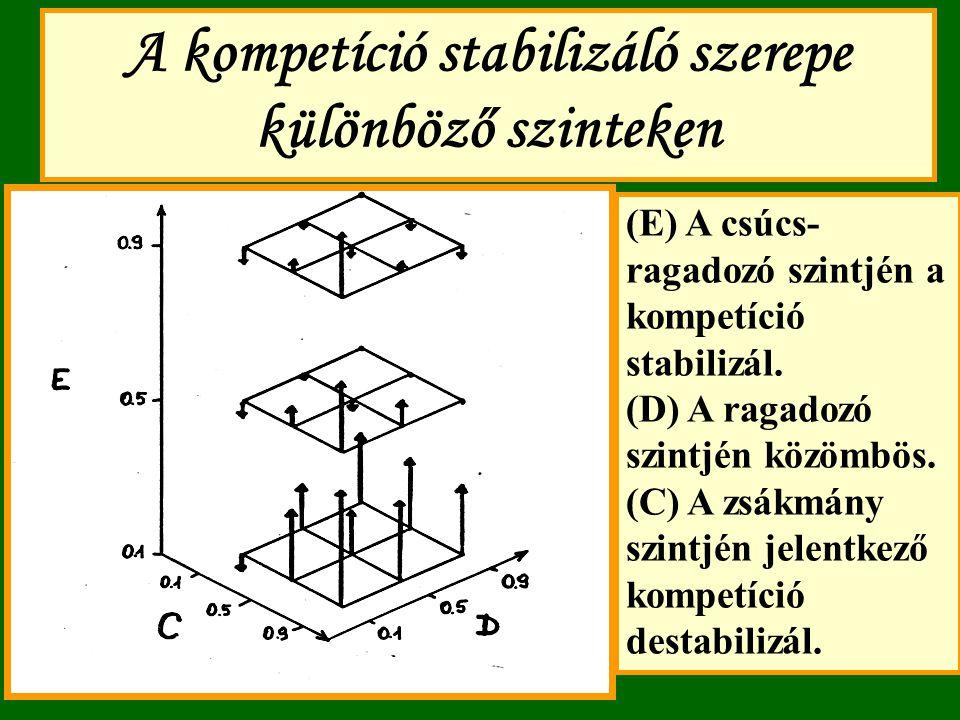 A kompetíció stabilizáló szerepe különböző szinteken