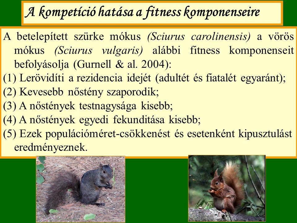 A kompetíció hatása a fitness komponenseire