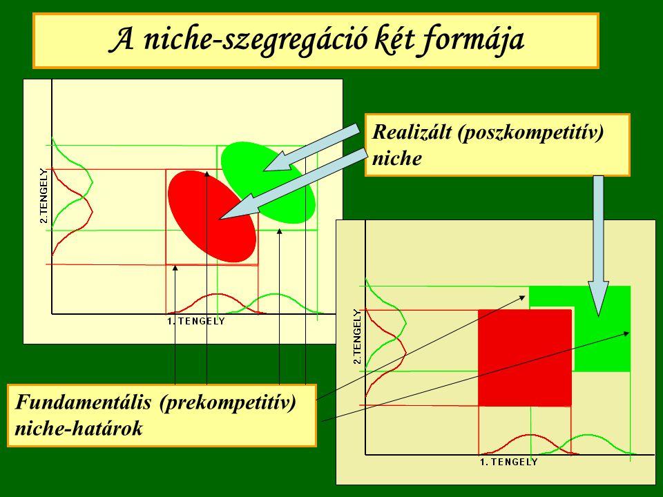 A niche-szegregáció két formája