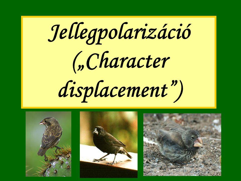 """Jellegpolarizáció (""""Character displacement )"""