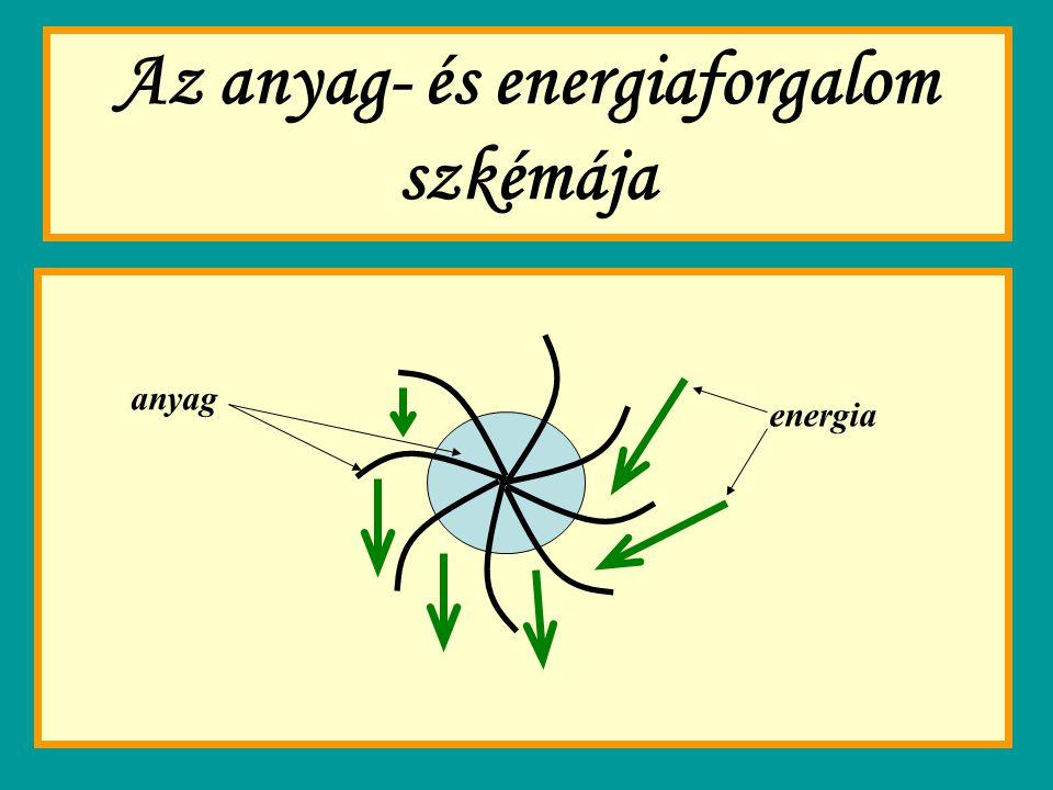 Az anyag- és energiaforgalom szkémája