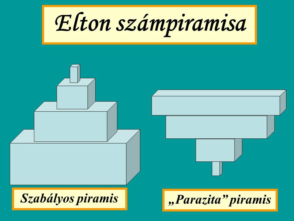 "Elton számpiramisa Szabályos piramis ""Parazita piramis"