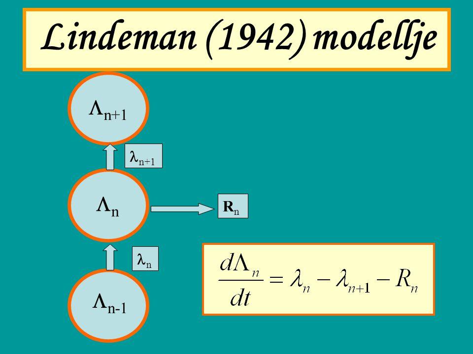 Lindeman (1942) modellje Ln+1 ln+1 Ln Rn ln Ln-1