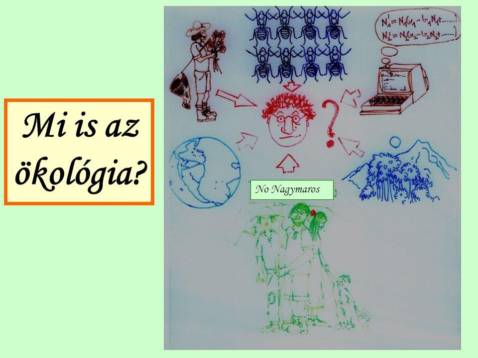 Mi is az ökológia No Nagymaros