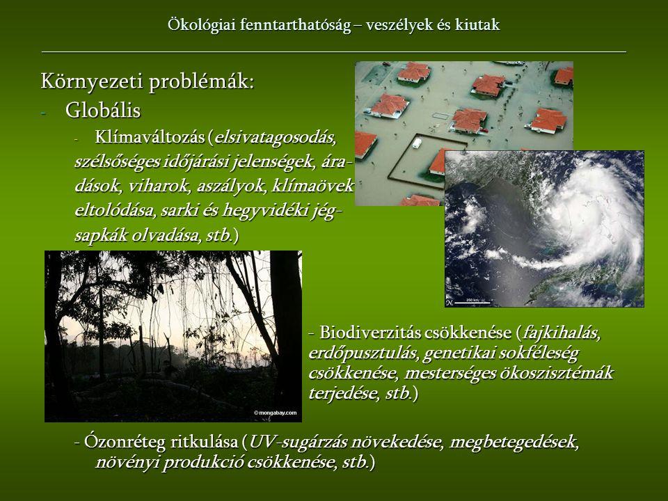 Környezeti problémák: Globális