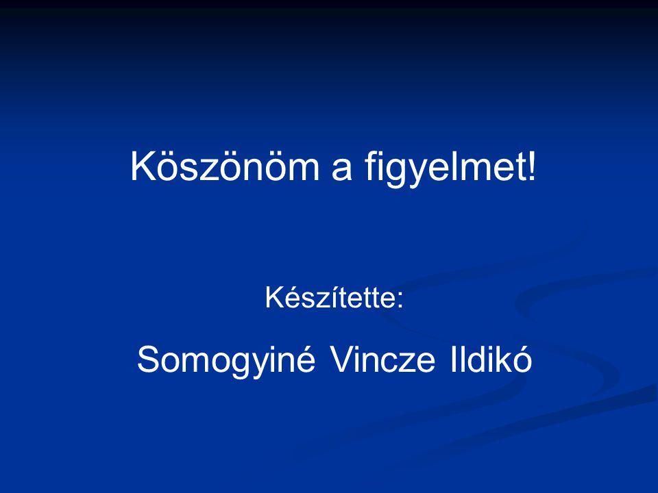 Somogyiné Vincze Ildikó