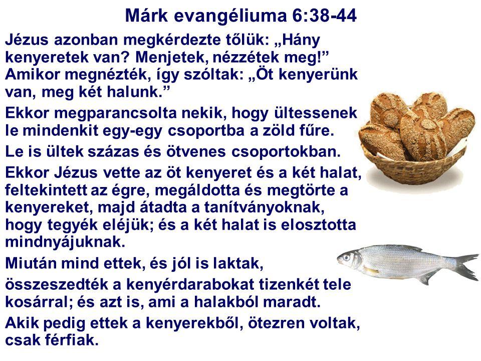 Márk evangéliuma 6:38-44