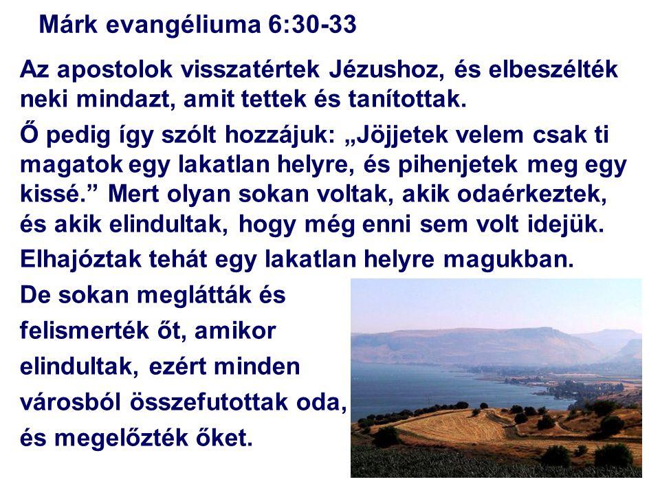 Márk evangéliuma 6:30-33 Az apostolok visszatértek Jézushoz, és elbeszélték neki mindazt, amit tettek és tanítottak.
