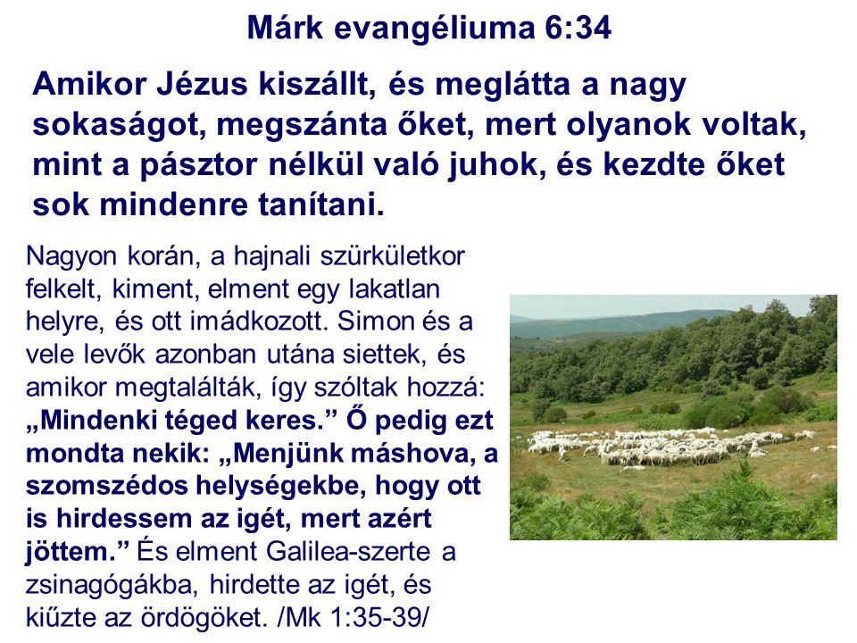 Márk evangéliuma 6:34