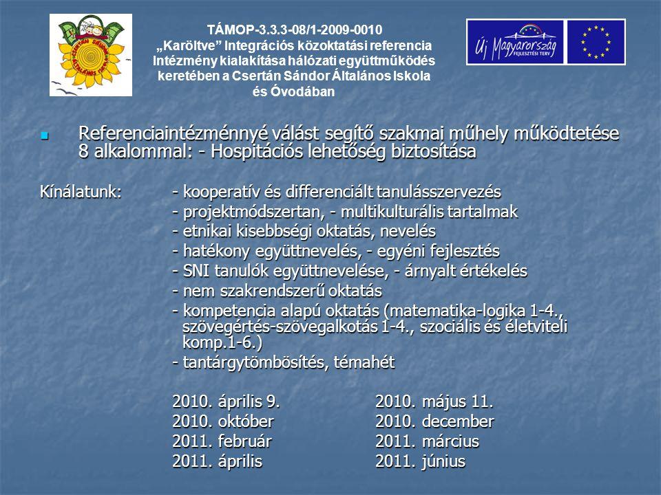 TÁMOP-3.3.3-08/1-2009-0010