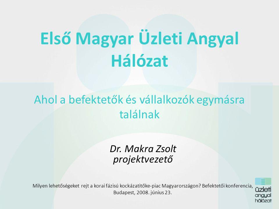 Dr. Makra Zsolt projektvezető