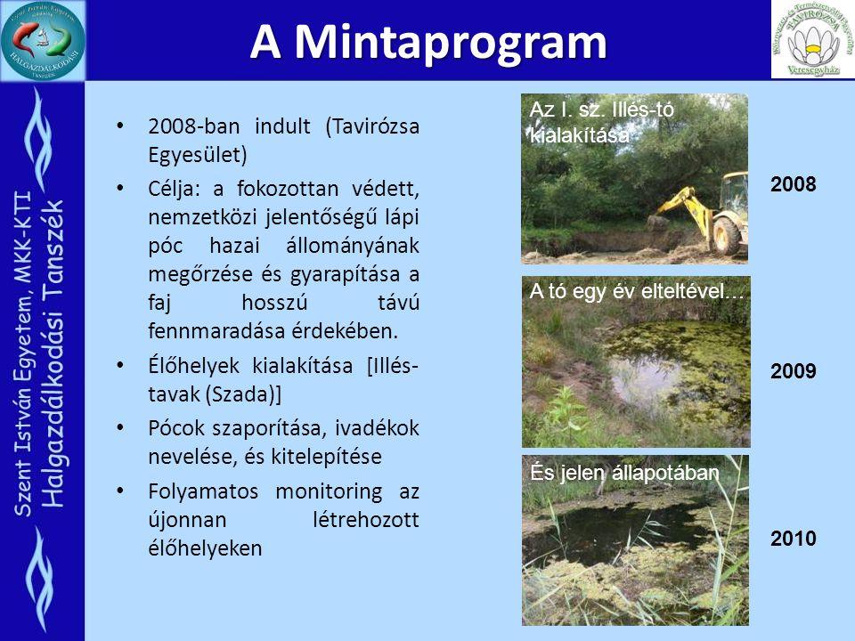 A Mintaprogram 2008-ban indult (Tavirózsa Egyesület)