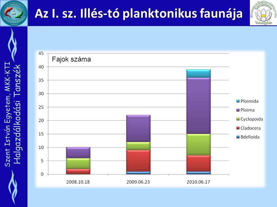 Az I. sz. Illés-tó planktonikus faunája
