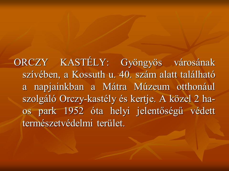 ORCZY KASTÉLY: Gyöngyös városának szívében, a Kossuth u. 40