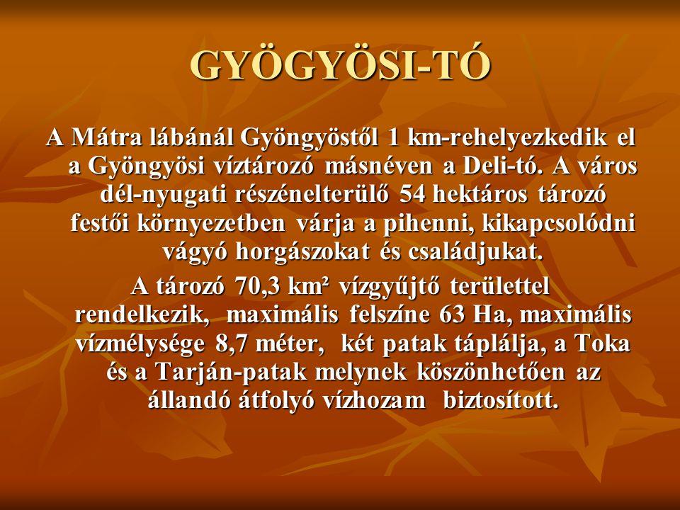 GYÖGYÖSI-TÓ