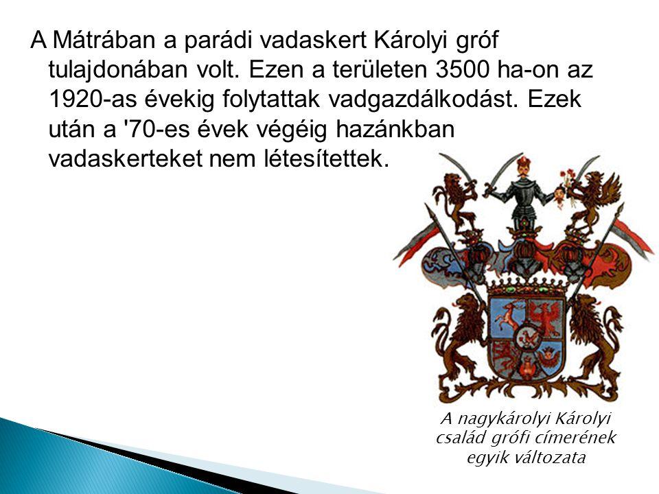 A nagykárolyi Károlyi család grófi címerének egyik változata