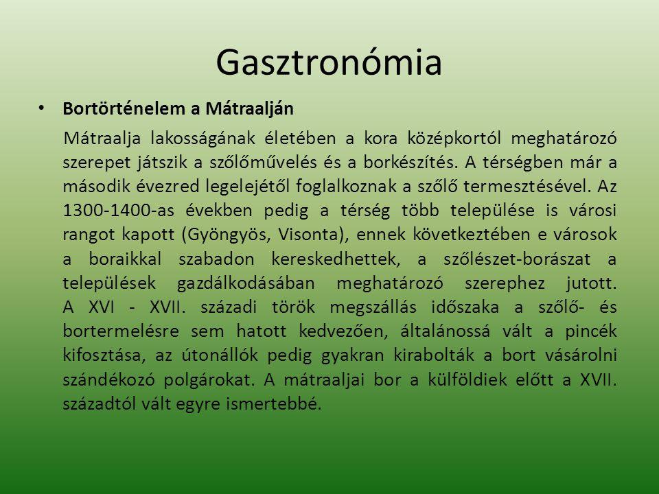 Gasztronómia Bortörténelem a Mátraalján