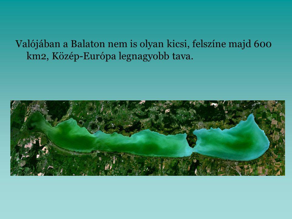 Valójában a Balaton nem is olyan kicsi, felszíne majd 600 km2, Közép-Európa legnagyobb tava.