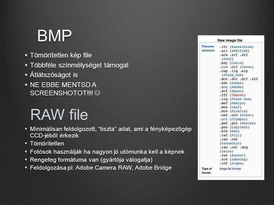 BMP RAW file Tömörítetlen kép file Többféle színmélységet támogat