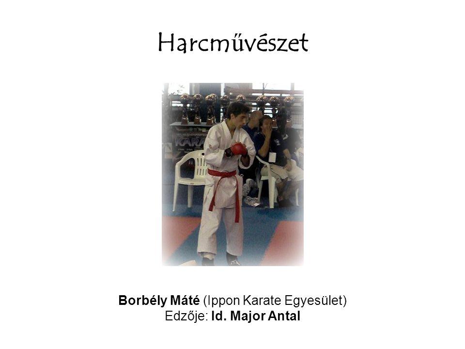 Borbély Máté (Ippon Karate Egyesület)