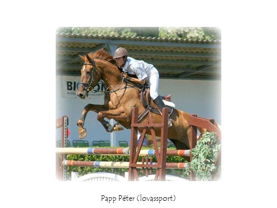Papp Péter (lovassport)