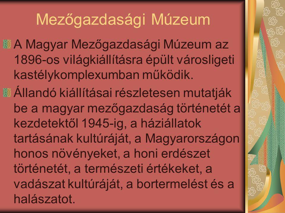 Mezőgazdasági Múzeum A Magyar Mezőgazdasági Múzeum az 1896-os világkiállításra épült városligeti kastélykomplexumban működik.