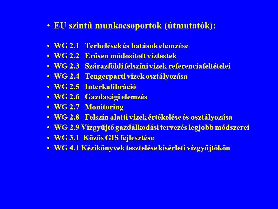 EU szintű munkacsoportok (útmutatók):