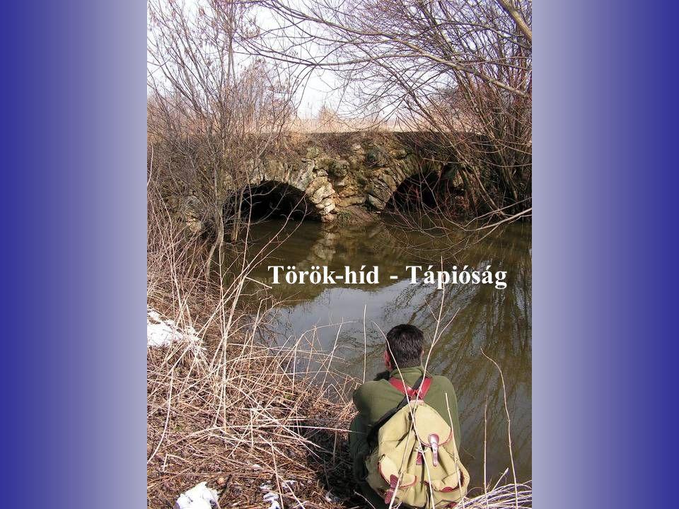 Török-híd - Tápióság