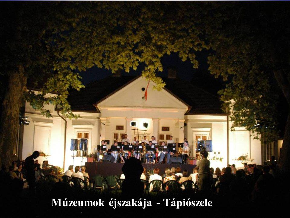 Múzeumok éjszakája - Tápiószele