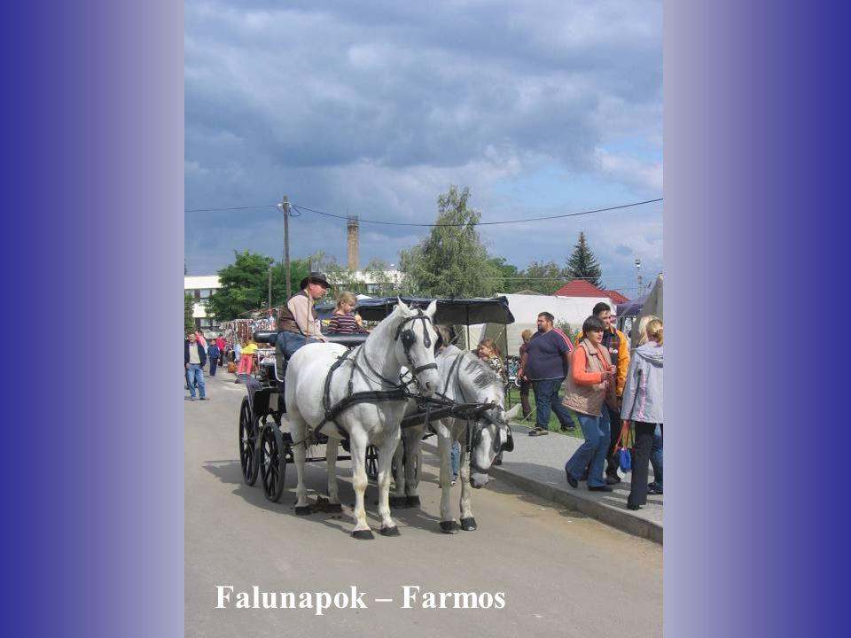 Falunapok – Farmos