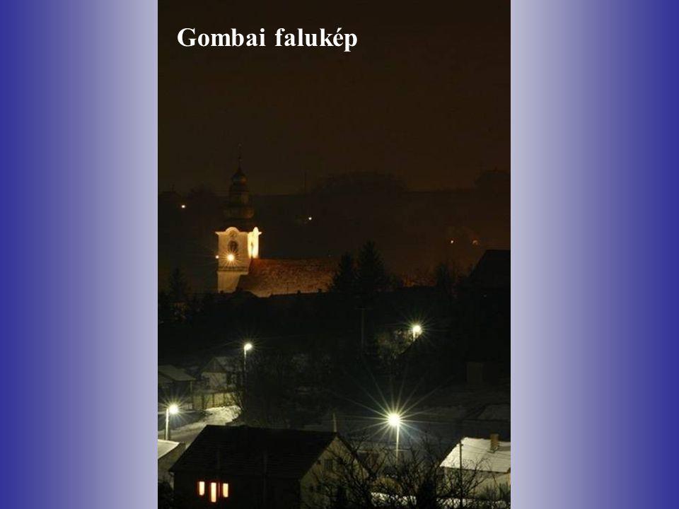 Gombai falukép