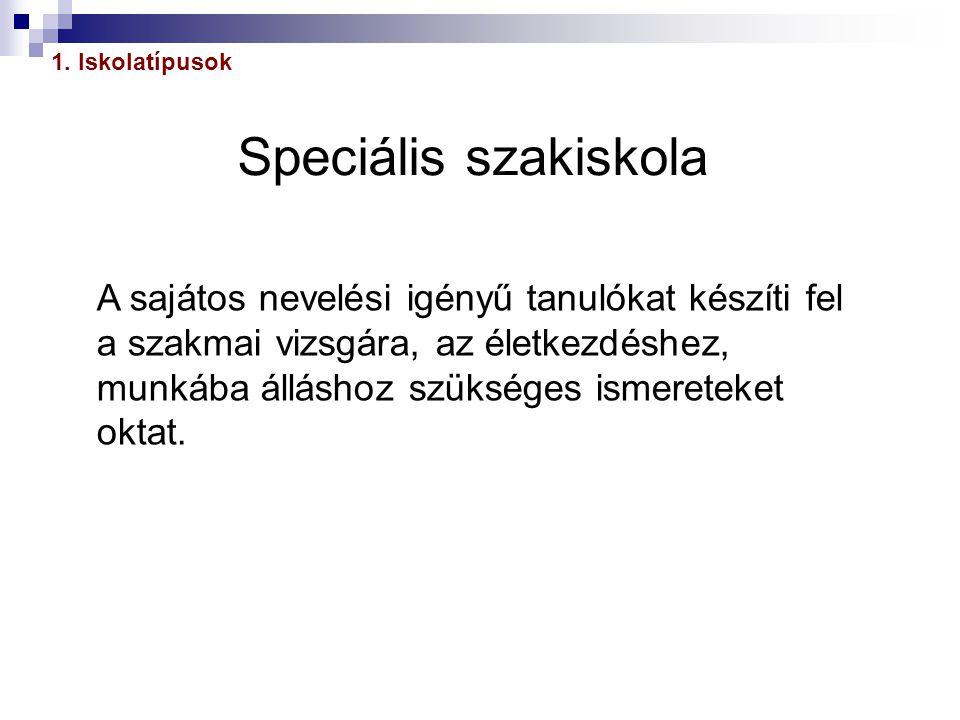 1. Iskolatípusok Speciális szakiskola.