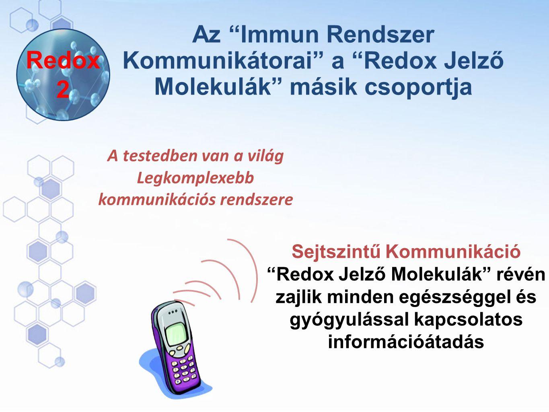 A testedben van a világ Legkomplexebb kommunikációs rendszere