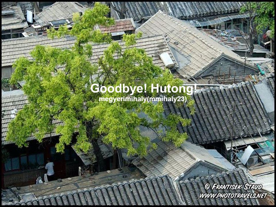 Goodbye! Hutong! megyerimihaly(mmihaly23)