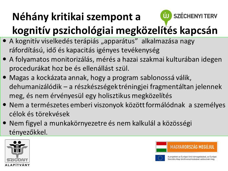 Néhány kritikai szempont a kognitív pszichológiai megközelítés kapcsán
