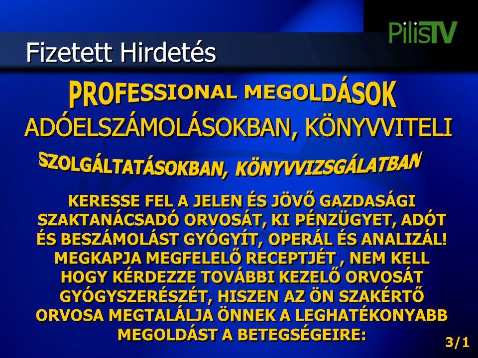PROFESSIONAL MEGOLDÁSOK SZOLGÁLTATÁSOKBAN, KÖNYVVIZSGÁLATBAN