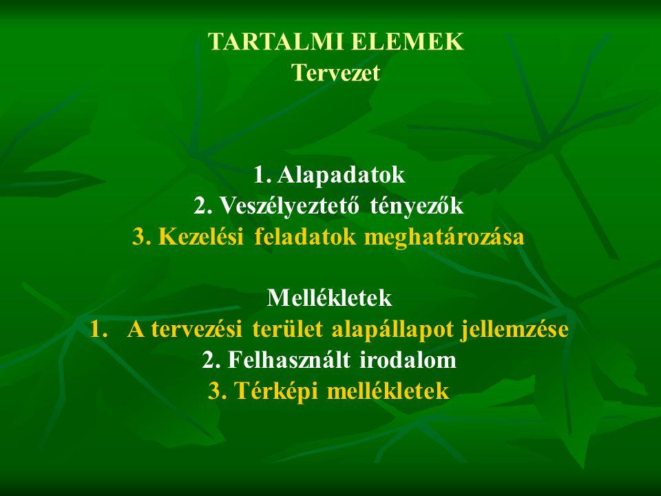 2. Veszélyeztető tényezők 3. Kezelési feladatok meghatározása