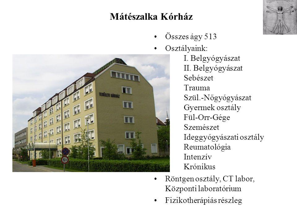 Mátészalka Kórház Összes ágy 513